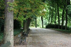 lazenky park