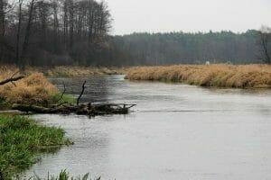 pilliza river