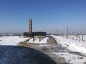 Majdanek-12