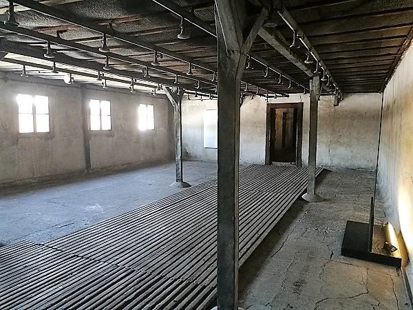 Majdanek-3