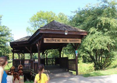 Białowieski Park Narodowy (11)