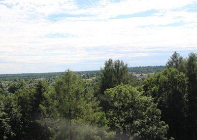 Białowieski Park Narodowy (17)