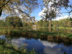 Białowieski Park Narodowy (25)