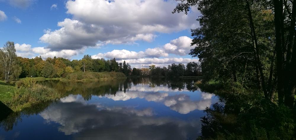 הפרק הלאומי ביאלובייסקה Białowieski Park Narodowy