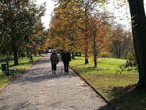 Białowieski Park Narodowy (5)
