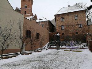 Tarnow-41
