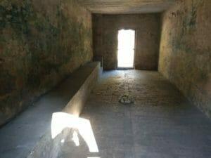 סיור מחנה הריכוז שטוטהוף2